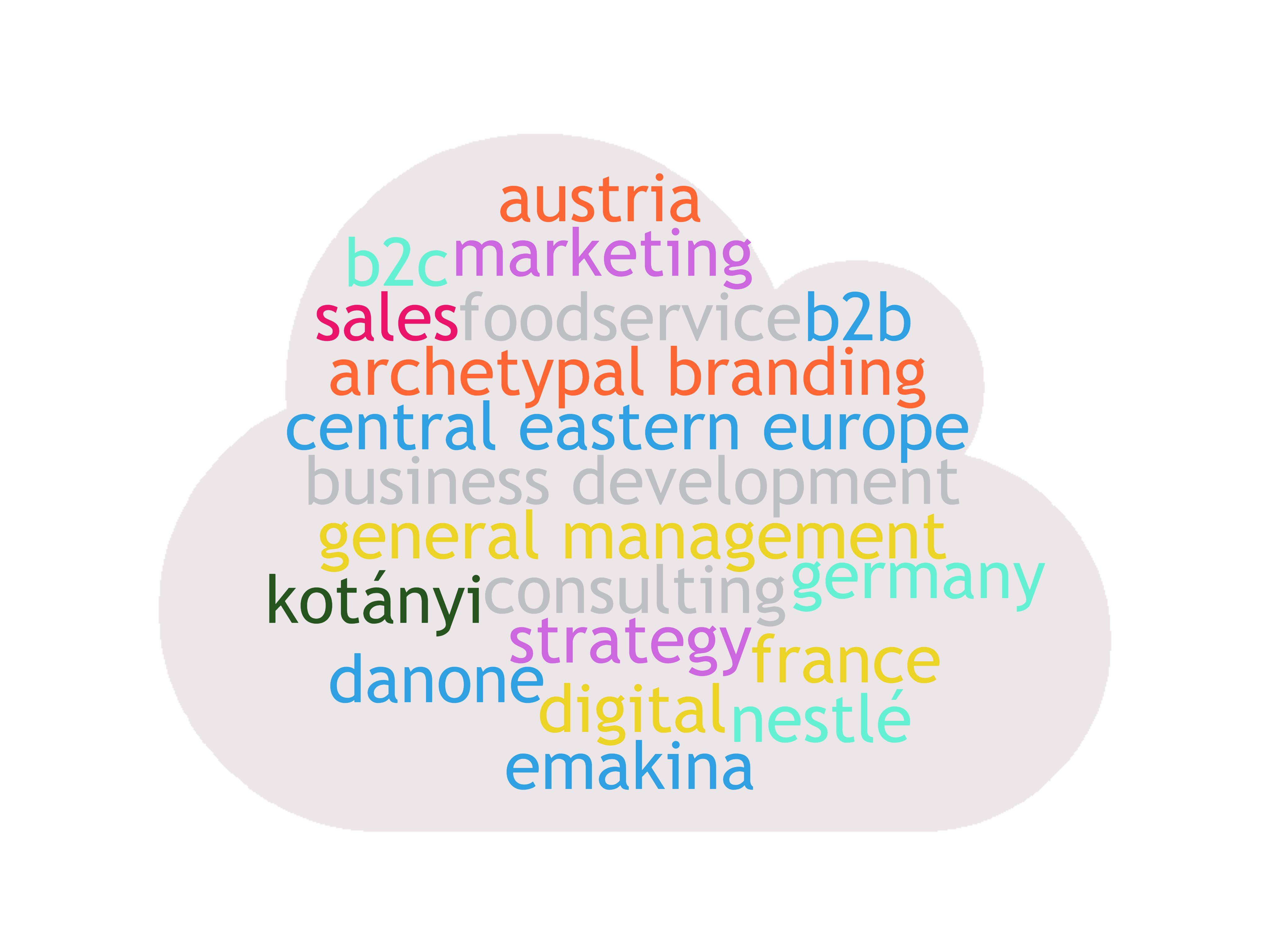 wordcloud  figuring the career path of owner